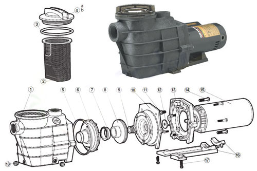 Hayward Super Ii Pump Parts Free Shipping