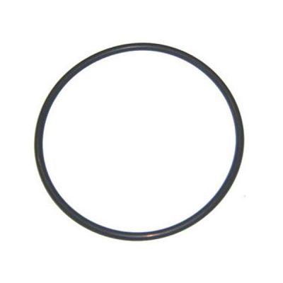 Aqua-Flo A-Series Pump Lid O-Ring 92200000