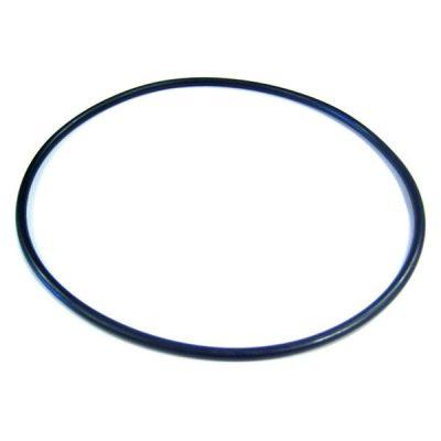 Jandy CS Series Cartridge Filter Tank Top O-ring R0462700