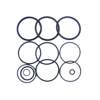 Jandy O-ring Kit DEL DEV CV CL Filter R0358000