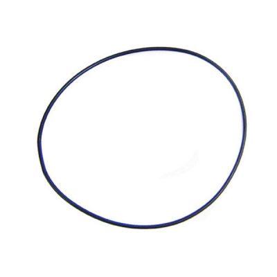 Pentair O-Ring MultiPort Tangelus Triton II Filter SPG-601-1090 154493