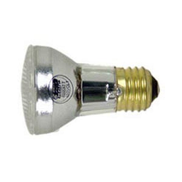 Pool and spa light halogen bulb feit electric qfl 60w - Swimming pool light bulbs halogen ...