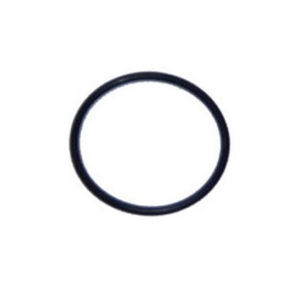 Waterway O-Ring 1.5 in. Union 805-0226