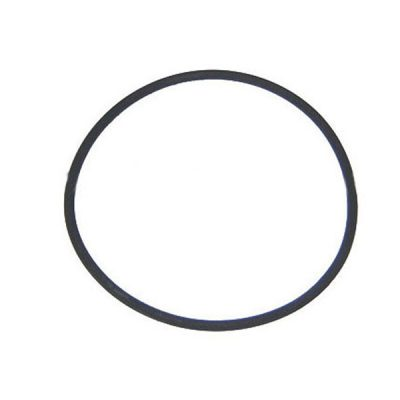 Waterway O-Ring Pump 6 in Trap Lid 805-0436