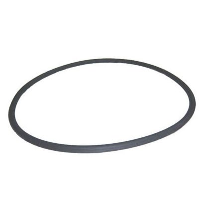 Pentair 21 in. Cord O-Ring System:3 Filter 24850-0008 O-485
