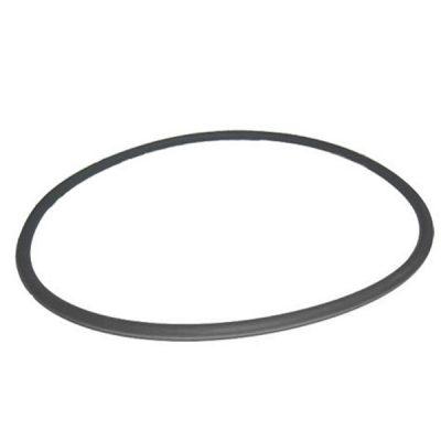 Pentair Purex FNS Fiberglass Filter Tank O-Ring 195008 O-420